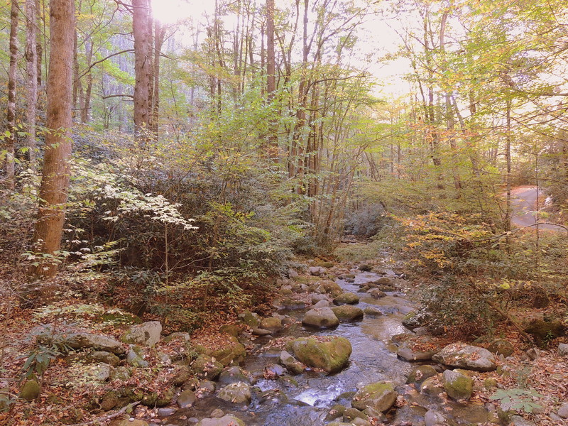 2016-Fall Colors- Rocks and Waters-2
