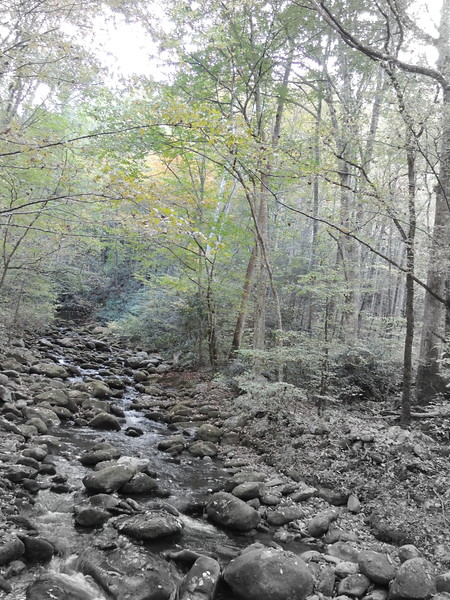 2016-Fall Colors- Rocks and Waters-1