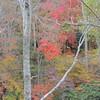 2016-Fall Colors-1