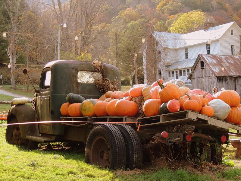 2016-Fall Harvest-3