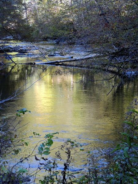 Smokey and Blue Ridge Fall - 5