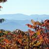 Smokey and Blue Ridge Fall - 6