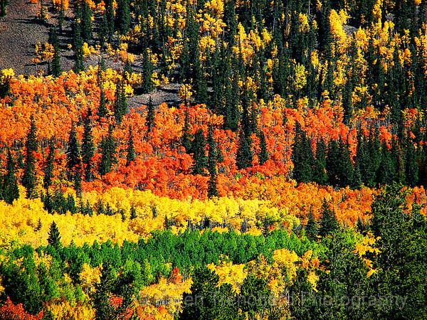 Como Boreas Pass, Colorado