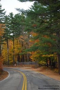 New Hampshire Foliage
