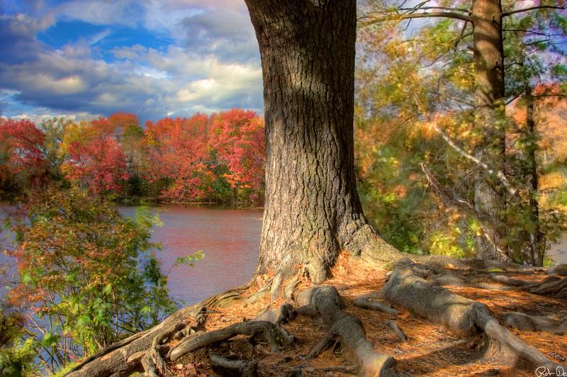 Spring Pond, Franklin MA