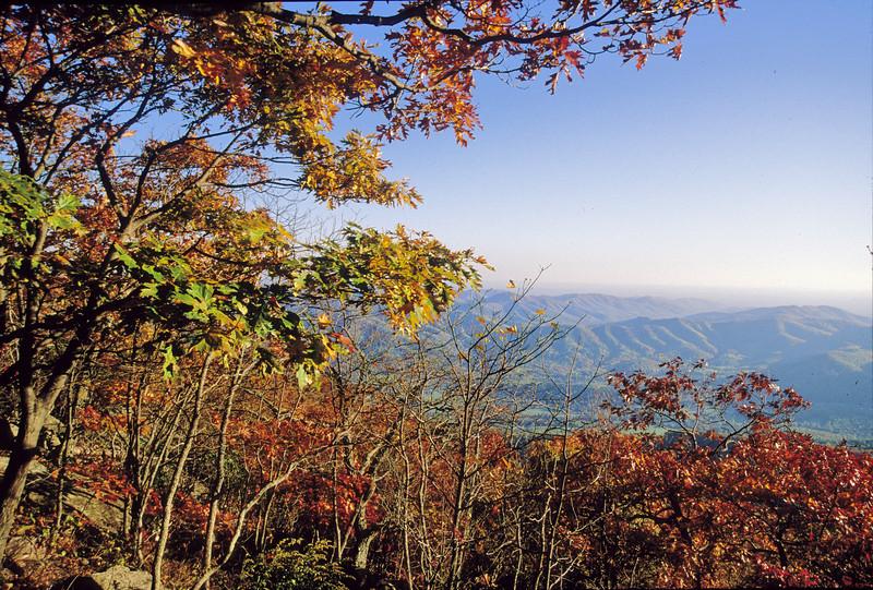 Black Rock overlook - fall