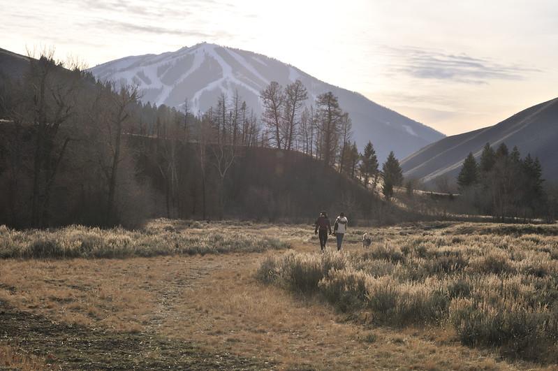 Baldie Mountain