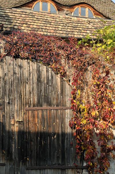 Hobbit house - Szentendre, Hungary