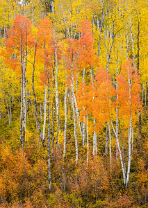 JD_Ouray_160930_0377