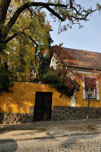 Street scene - Szentendre, Hungary