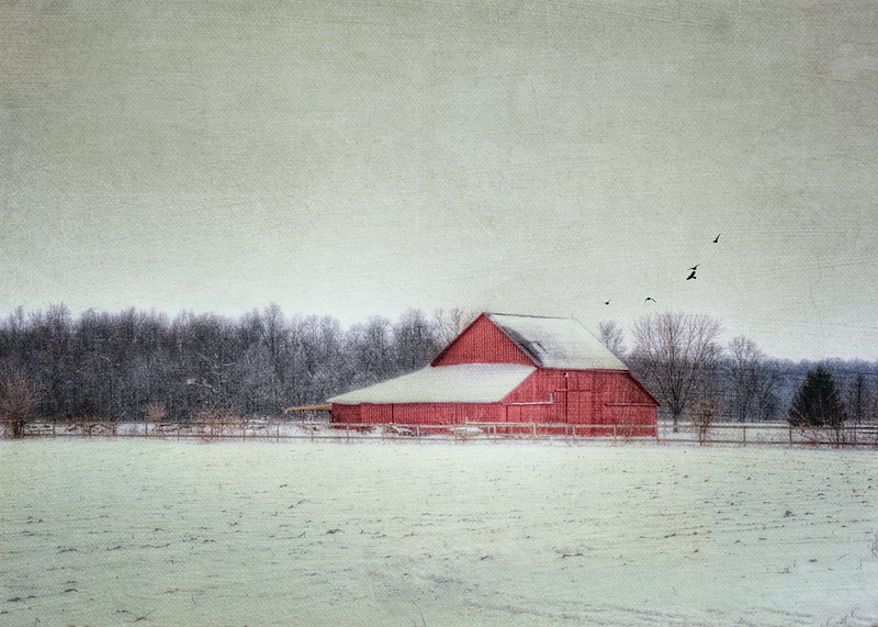 Ralph's Barn