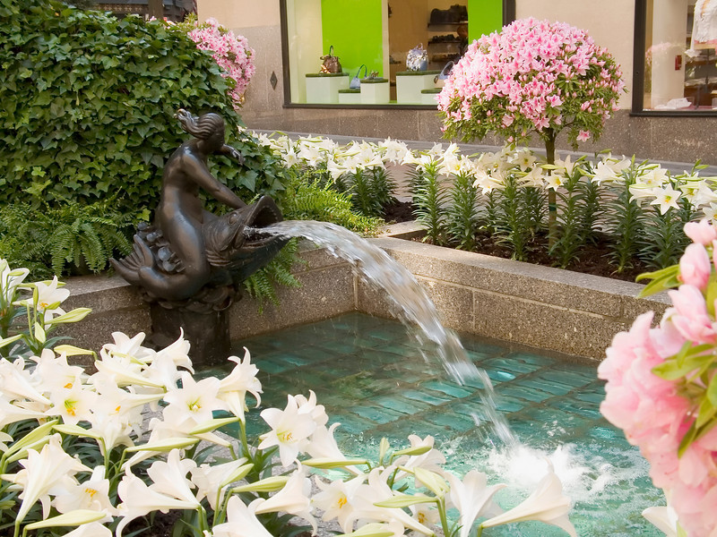 """Spring NYC"" <br /> Easter Lillie's surround a fountain in Rockefeller Center in Manhattan."