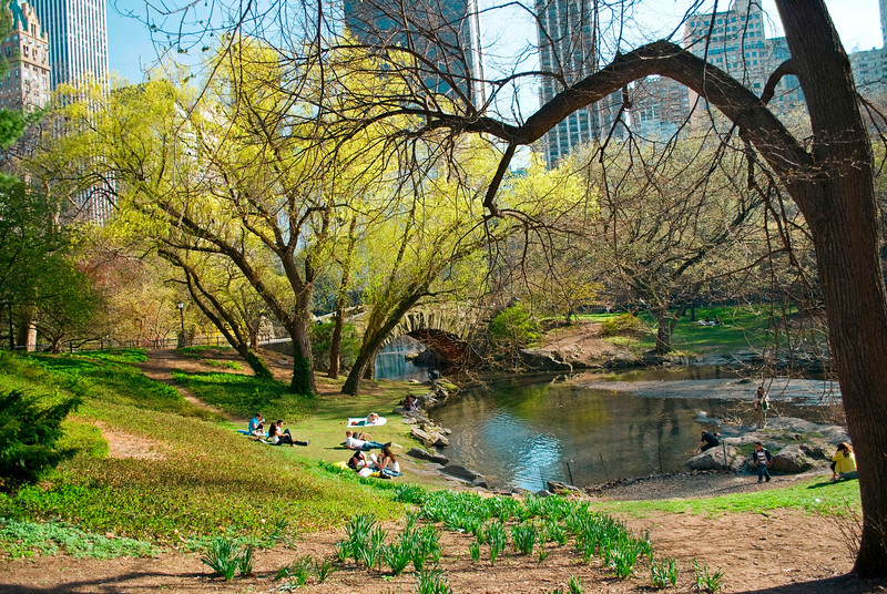 """Peaceful Central Park""<br /> An early Spring view near the duck pond in Central Park in Manhattan."