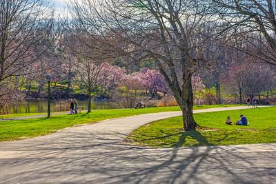 Sunny Day Holmdel Park