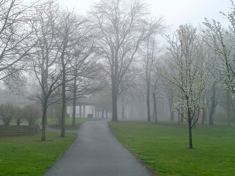 """Park in Fog"" <br /> A foggy early Spring morning at this park in Manalapan, New Jersey."