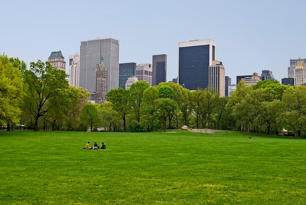 """Spring Sheep Meadow""  A Spring view of the lawn on Sheep Meadow in Central Park."