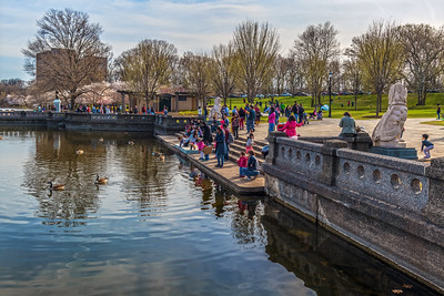 Lake Fun in Branch Brook Park