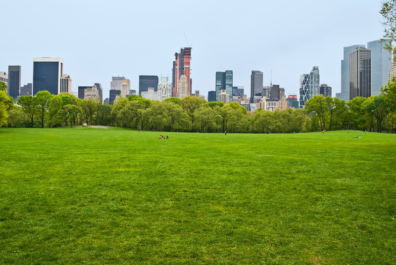 """Spring View Sheep Meadow""<br /> <br /> The huge lawn of Sheep Meadow in Central Park on a quiet Spring Day in Manhattan."