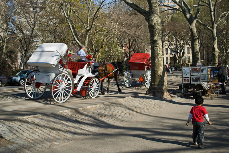 """Central Park Buggy""<br /> A horse and carriage on an early Spring afternoon in Central Park in Manhattan."