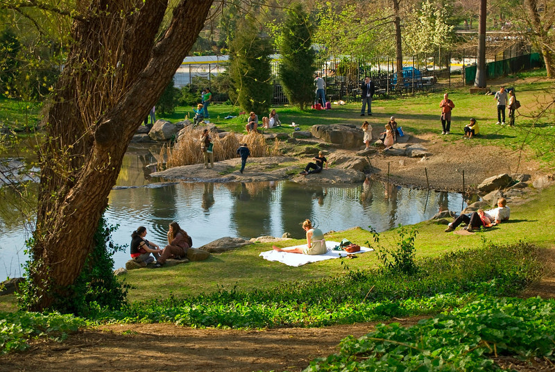 """Oasis in the Park""<br /> People enjoying an early Spring day by a small pond in Central Park."