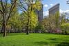 Madison Park Spring