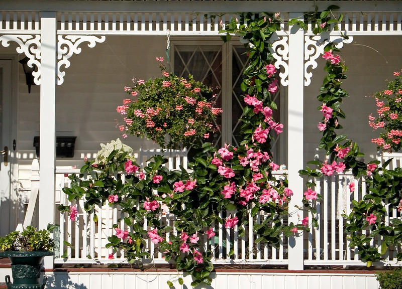 """Porch"" An old fashioned wooden porch with a trellis and fresh garden blossoms."
