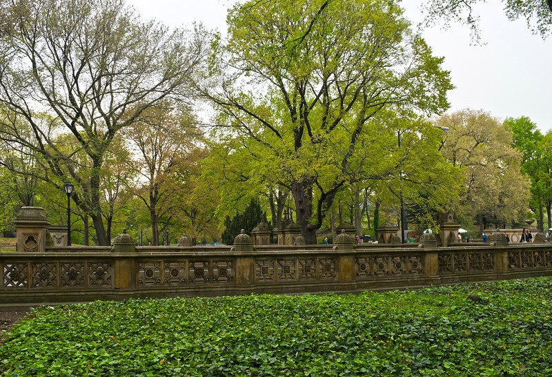 """Wall and Ivy Central Park"" 2012<br /> <br /> A look at the classic style of architecture during the Spring in Central Park in Manhattan."