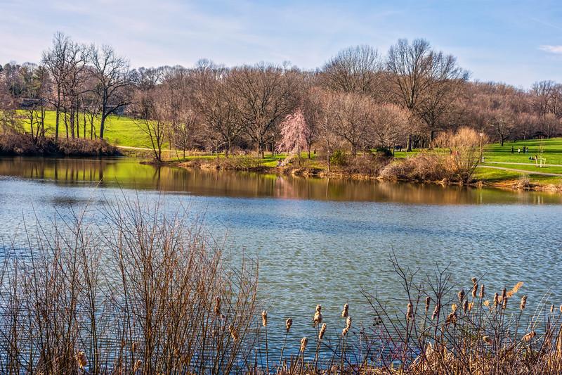 Scenic Holmdel Park