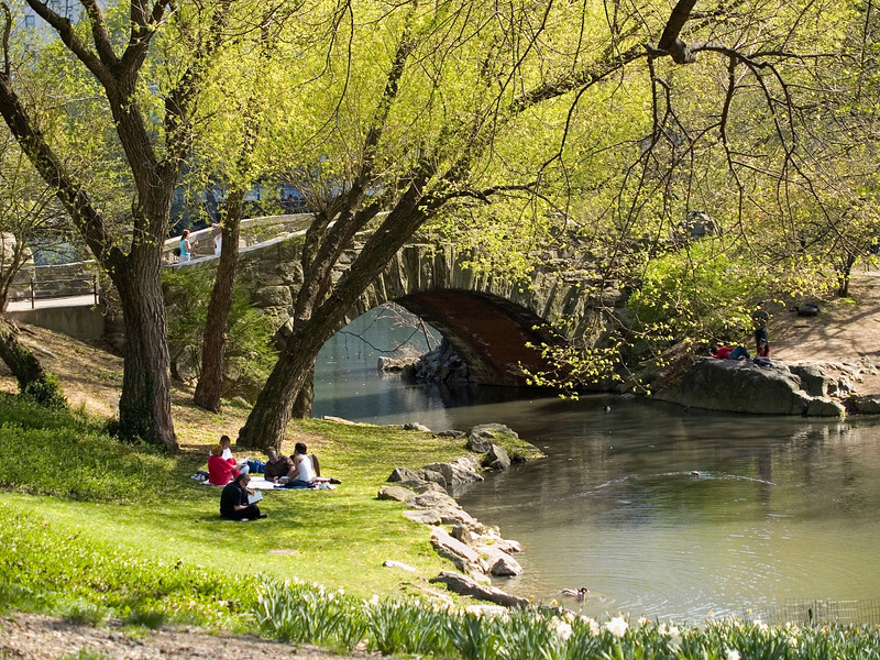 """Spring Afternoon""<br /> People relaxing by the pond in Central Park on a beautiful Spring day."