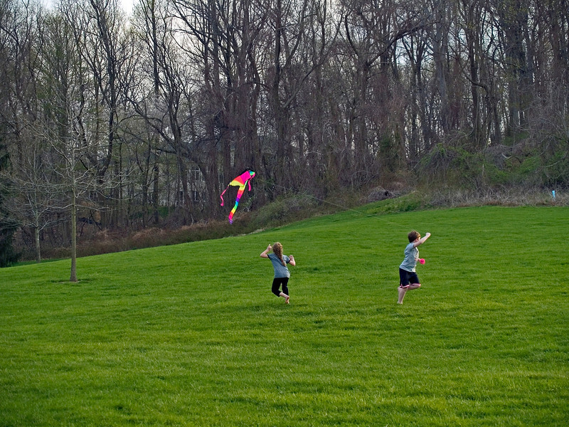 """Kite and Kids""<br /> Kids enjoy flying a kite on a beautiful early Spring day in Holmdel Park in New Jersey."