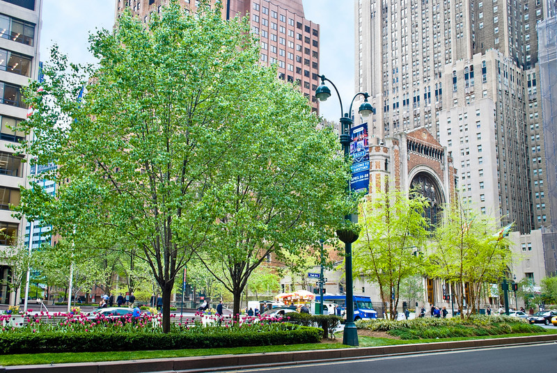 """Park Ave. Spring""<br /> A Spring view of Park Ave. in New York City."