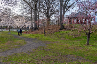 Spring Stroll in the Park