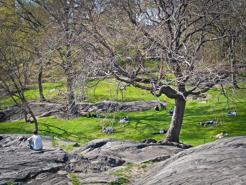 """Relaxing Central Park""<br /> <br /> People relaxing in Central Park on the rocks and the lawn during early Spring."