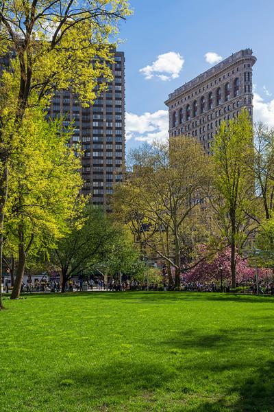 Spring Madison Park