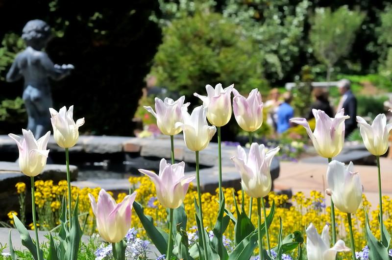 Sarah P. Duke Gardens - Durham, NC