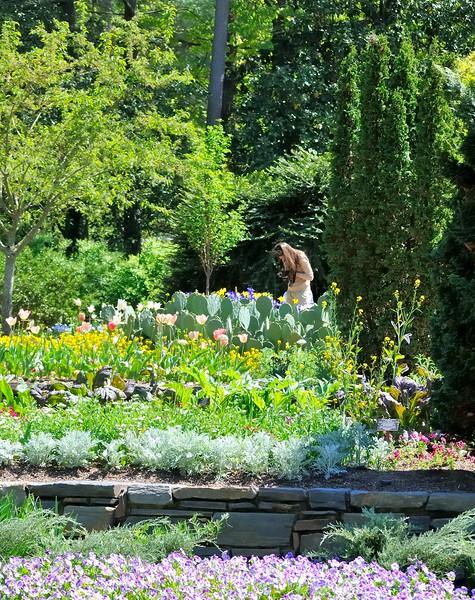 Photographer - Sarah P. Duke Gardens - Durham, NC