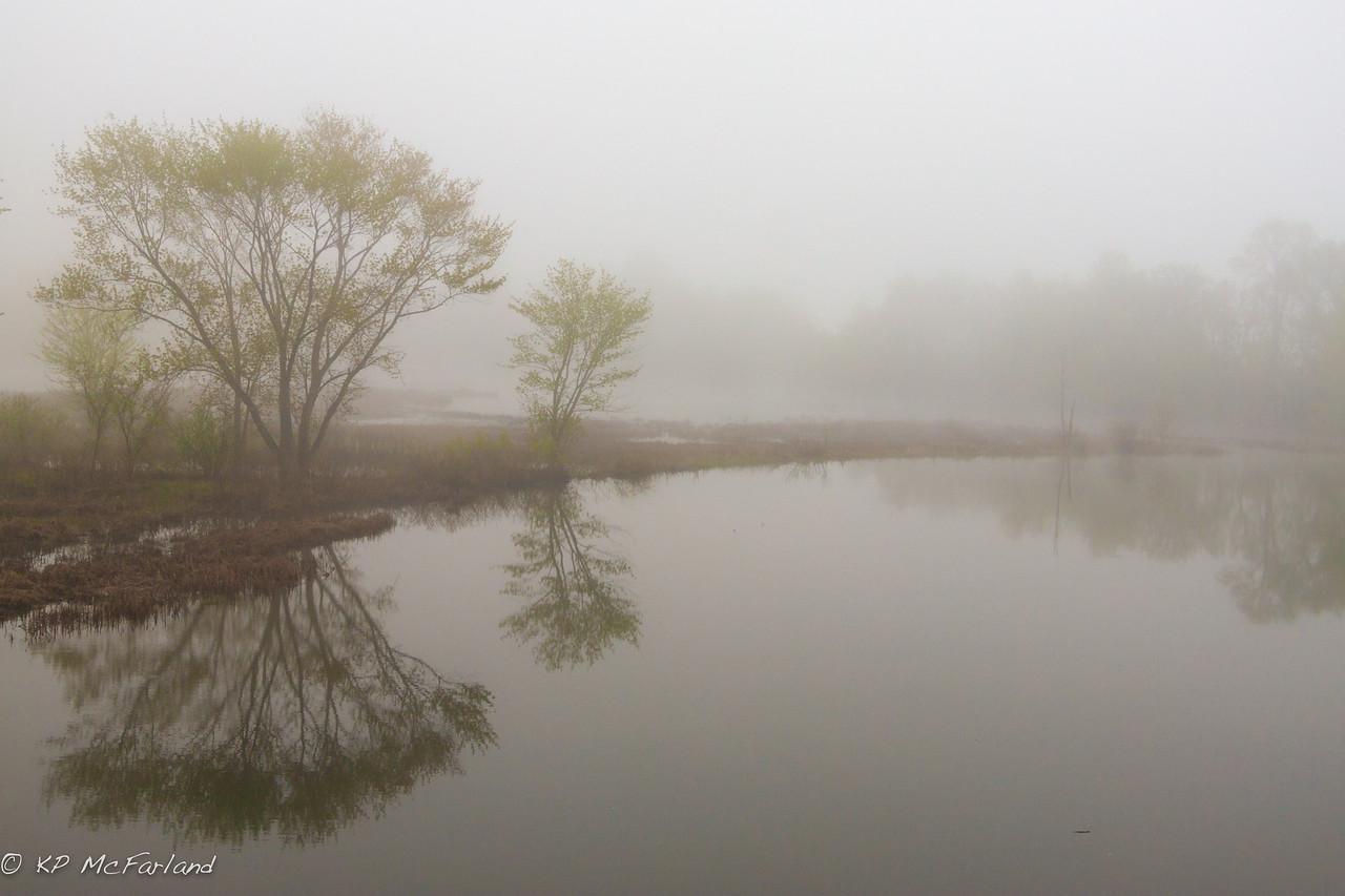 Morning River Fog