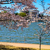 Jefferson Memorial at mid-morning