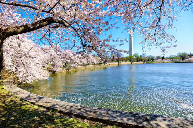 Washington Memorial at mid-morning