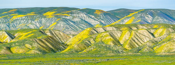 JD_CarrizoPlain_170404_0063