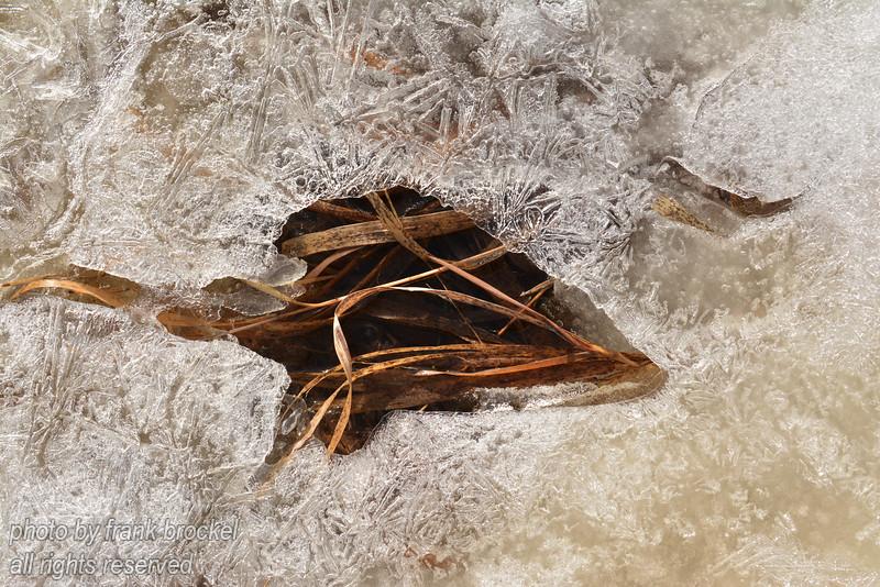 Ice Art 9