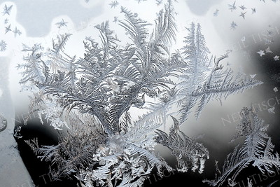 #1037  Delicate and fanciful patterns of winter frost sometimes appear on the inside of our storm windows.