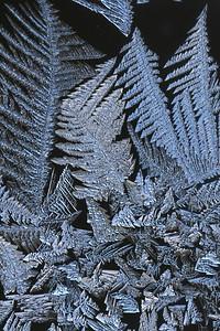 #1588  Window frost