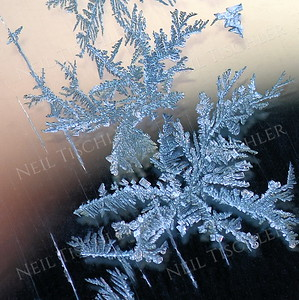 1357  Frost crystals on car window