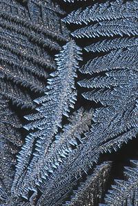 #1582  Window frost