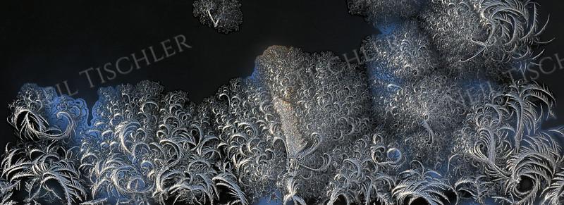#1580  Window Frost