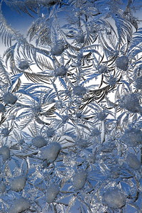 #793  Delicate and fanciful patterns of winter frost sometimes appear on the inside of our storm windows.  This image shows the refrozen water droplets from the prior morning's frost pattern acting as nucleation sites for new frost crystal growth.