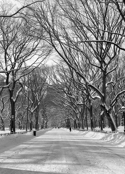 SnowfallOntheMallBW
