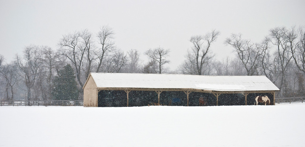 """Winter Farm Panorama"" 2011"