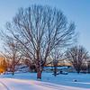 Winter Sunrise On Snow